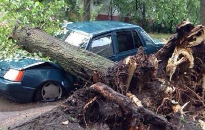 Ураган в Северодонецке