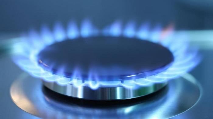 ВДонецкой области отравилась газом семья: 11 детей идвое взрослых
