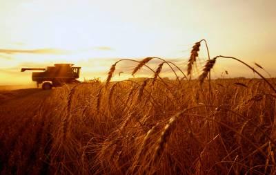 Комбаин в поле