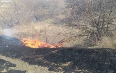 На Луганщине загоревшийся камыш едва не привёл к пожару в жилом доме