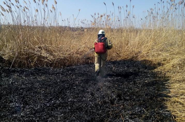 На Луганщине от огня пострадали 36 га территории