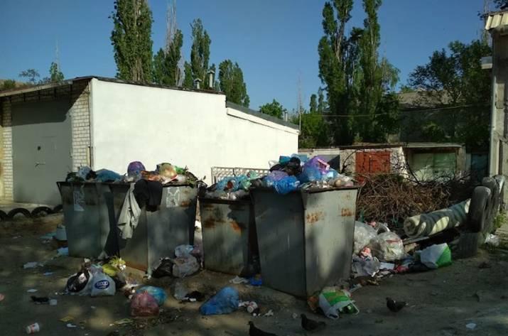 На сегодняшний день одной из проблем Северодонецка является мусор.