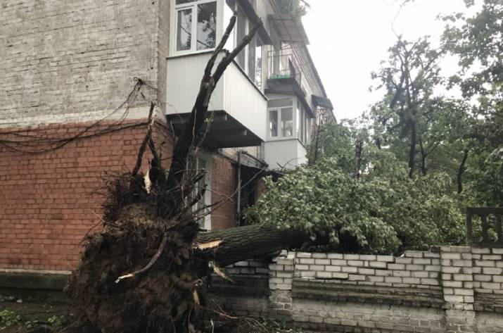 Ураган в Рубежном