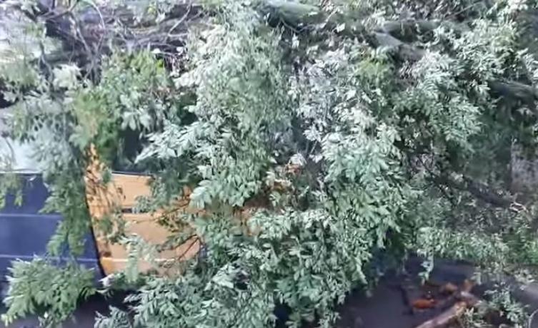 Ураган наделал беды в Донецке (видео)