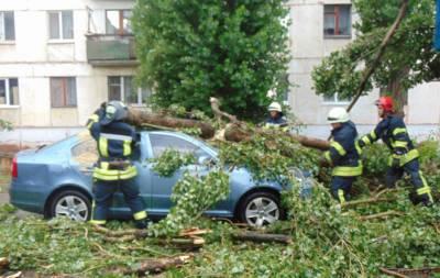 Рубежное получит средства на ликвидацию последствий стихийного бедствия