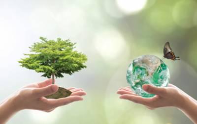 На экологию Луганщины потратят 23,5 млн гривен
