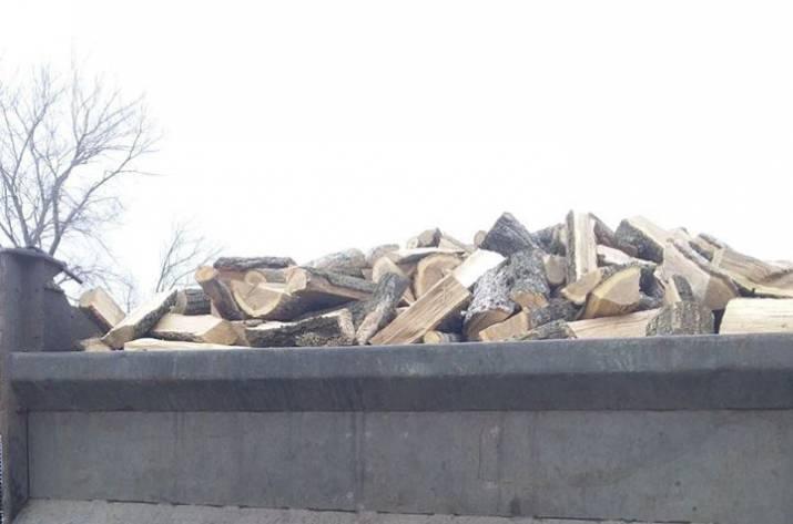 В Северодонецке выявили незаконно вырубленную древесину