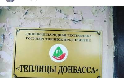 В Донецке показали гибель