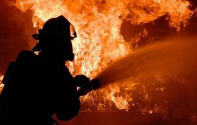 На оккупированной Луганщине из-за пожаров умер один мужчина и пострадали трое человек, в том числе и ребёнок. Об этом сообщает так называемое