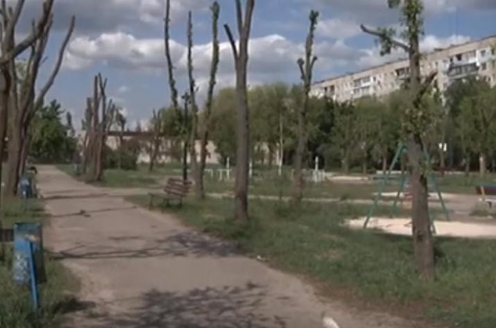 Молодежный парламент Северодонецка инициировал возрождение сквера по пр. Космонавтов. Власти города поддержали эту идею.