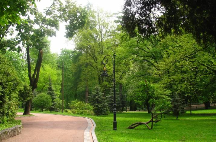 На городской парк в Рубежном собираются потратить 117 миллионов