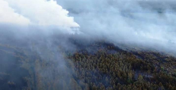 Масштабные пожары, охватившие Луганщину, сняли с дрона.