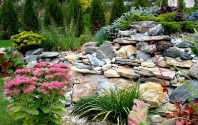 Декоративные камни для сада ландшафтный дизайн