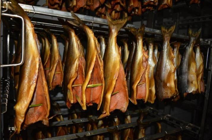 Где купить коптильню для рыбы холодного копчения размер самогонного змеевика